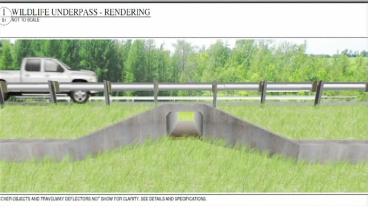Monkton Wildlife Crossing Project rendering
