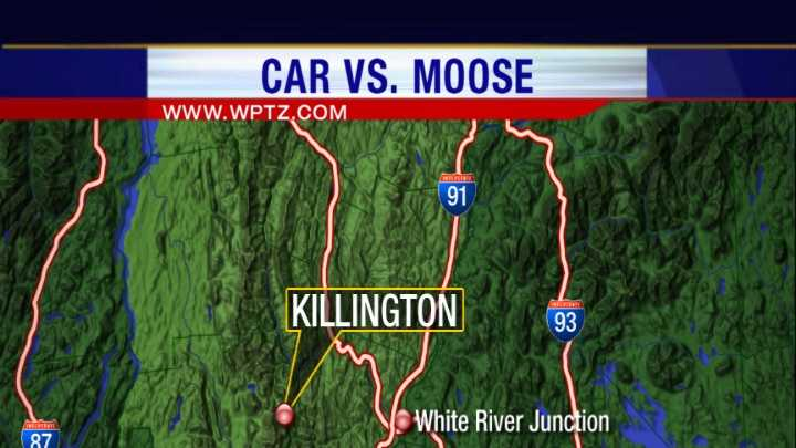 06-17-13 Two injured in moose accident - img