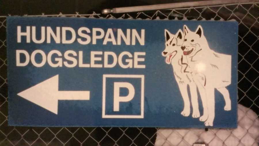 During his year abroad, David backpacked around Europe. Over the winter break, he left Italy for a month and decided to go north. He photographed this sign in the Swedish town of Kiruna, above the Arctic Circle.