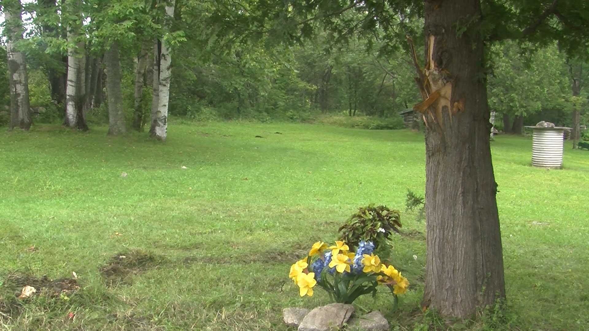 Two people killed after ATV crashes into tree - img