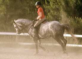 I used to ride competitively, now I just ride for fun whenever I can!