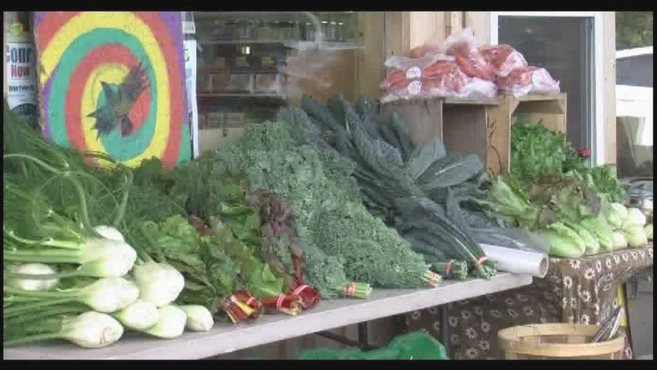 Conroy Organics holds farm fest