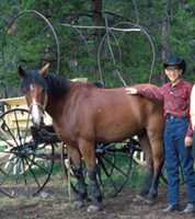 """When I was 13, I was sent to a working ranch in Colorado to """"toughen up"""". Not sure it worked—even the horse looks skeptical."""