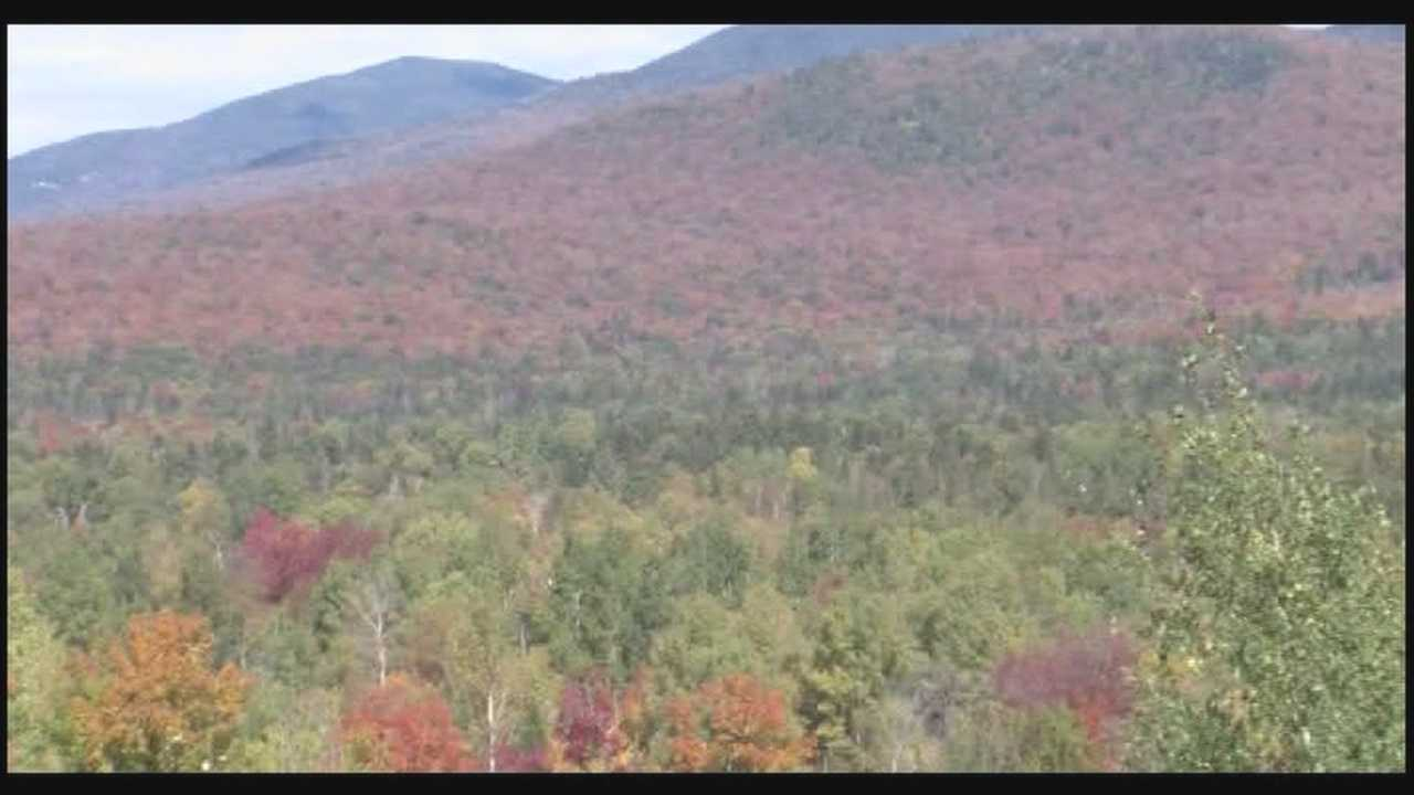 09-26-13 img-Fall foilage gives tourism a boost