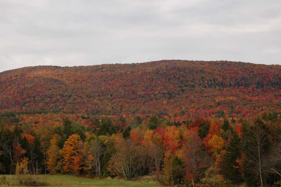 Montgomery, Vt. by Connie Boutin.
