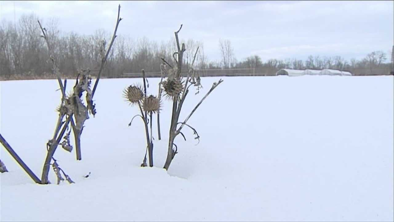 Late winter weather negatively impacting schools, businesses