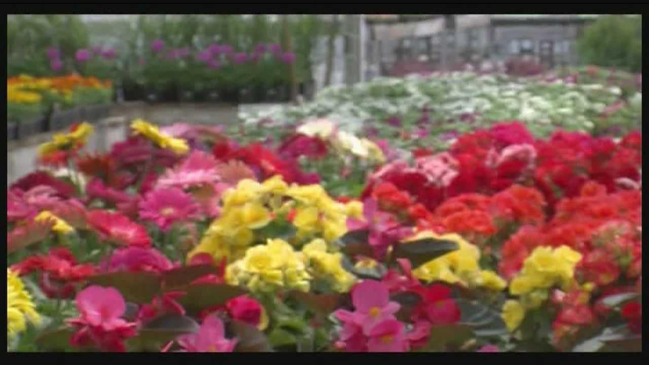 Garden center opens for spring