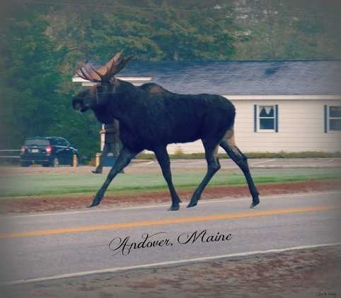 Andover, Maine