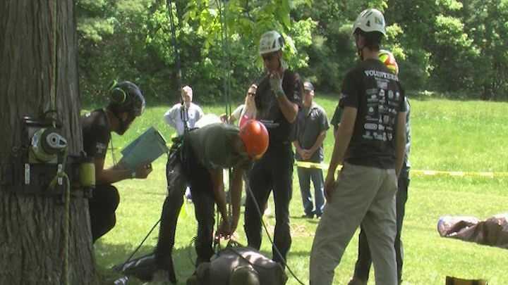 5-31-14 Arborists climb in Burlington - img