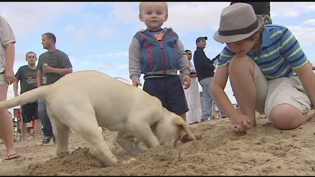 Hundreds come out to celebrate city beach opening