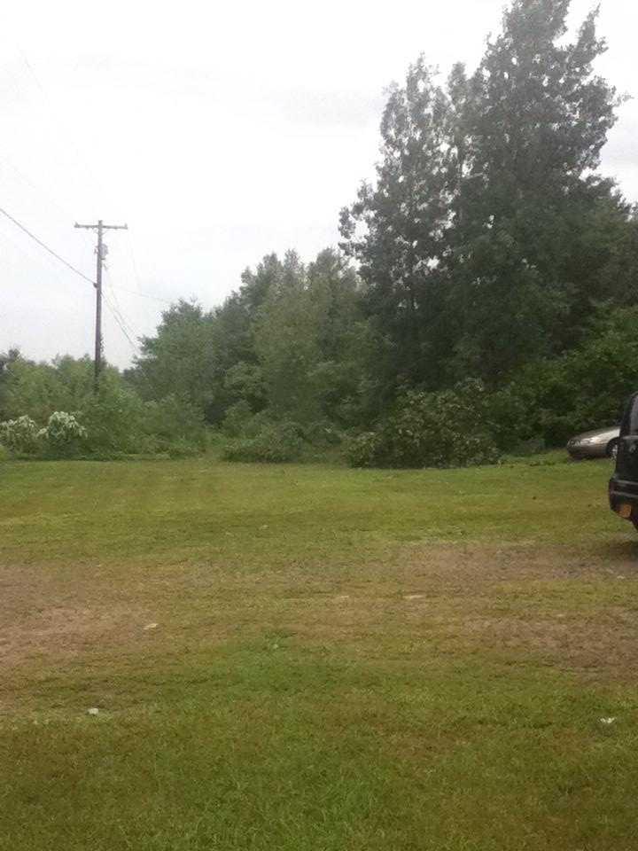 Trees, powerline down in Mooers, N.Y.