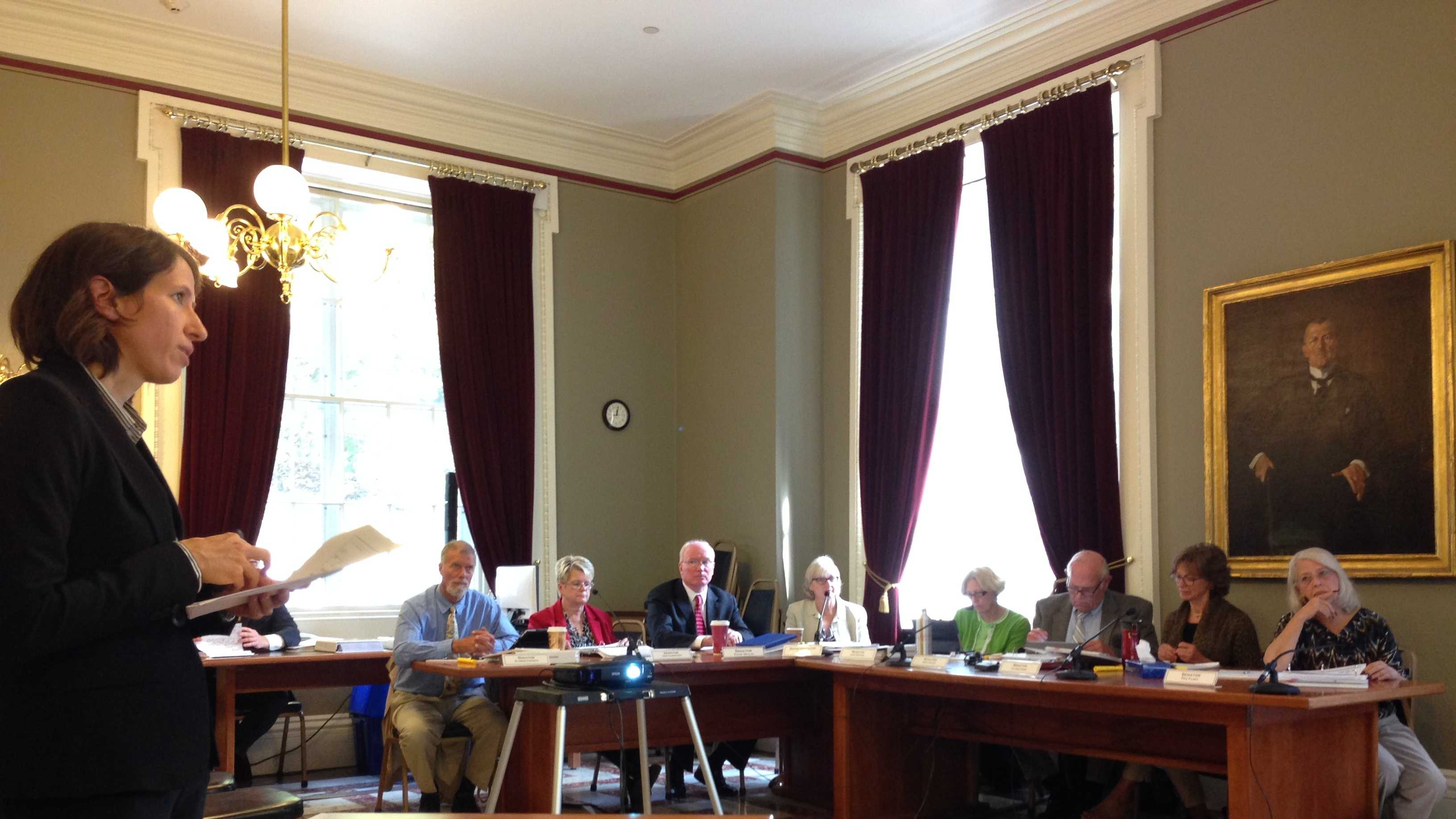 Committee on Child Protection held tenth hearing Thursday.