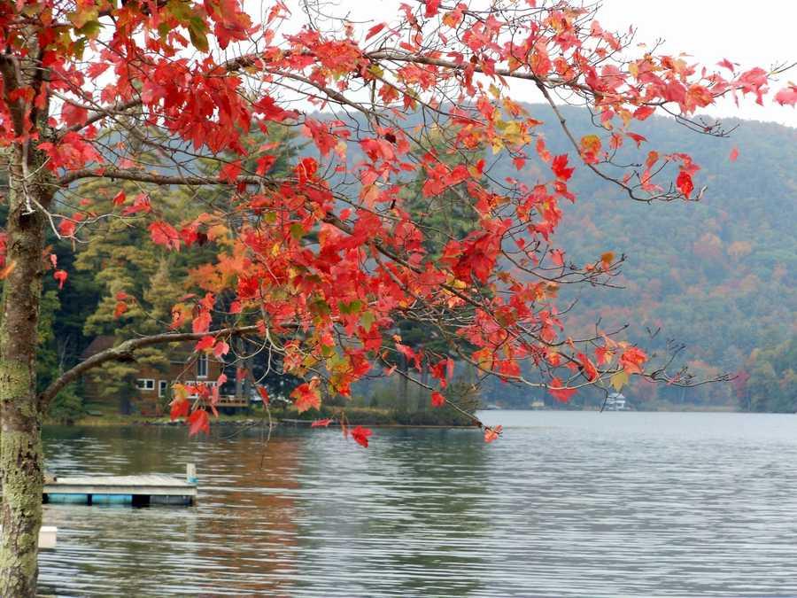 Metcalf Pond, Fletcher, VT