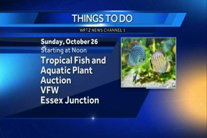 Tropical Fish of Burlington will hold a full day tropical fish and aquatic plant auction. It begins at noon at the VFW in Essex Junction. You can find lots of fish, live plants, new and used aquarium equipment and more.