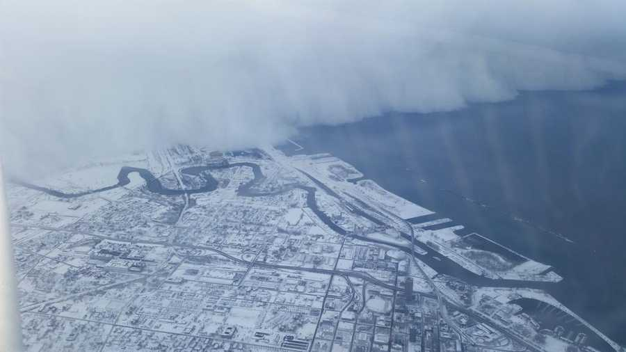 Buffalo from the air.