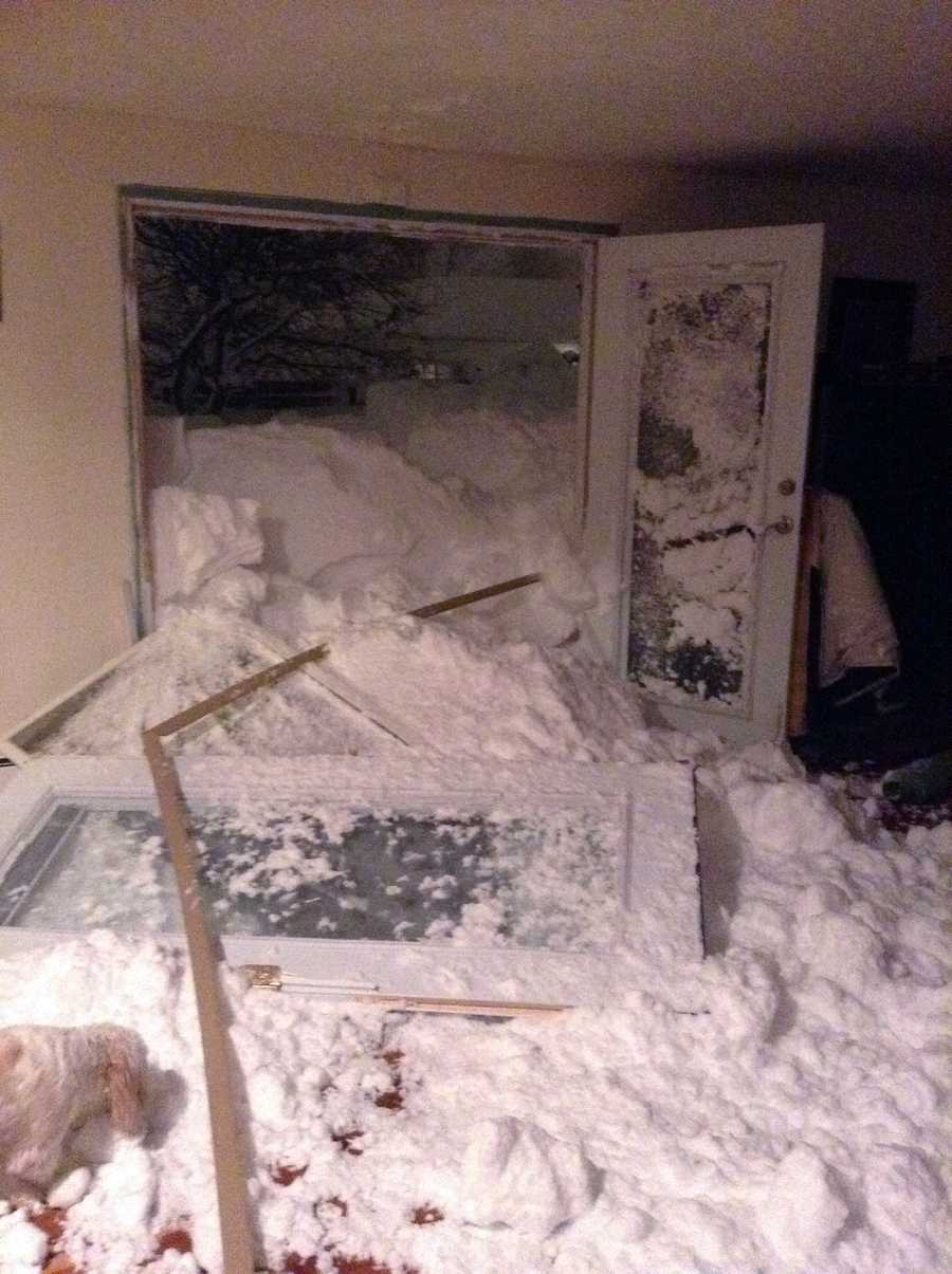 In this photo provided by Chrissy Hazard , a dog looks at the snow that was blown in the back door of the home of Chrissy Hazard on Tuesday, Nov. 18, 2014 in Cheektowaga, N.Y.