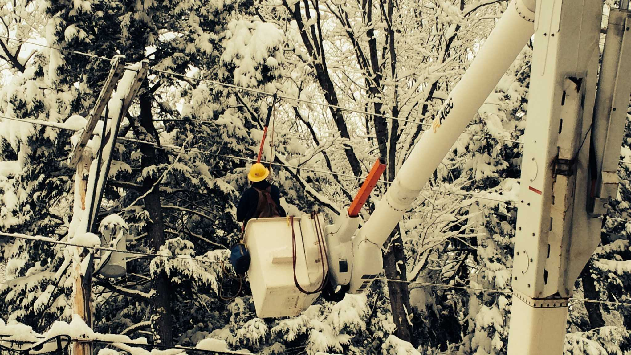 Provided by Green Mountain Spokesperson Dorothy Schnure