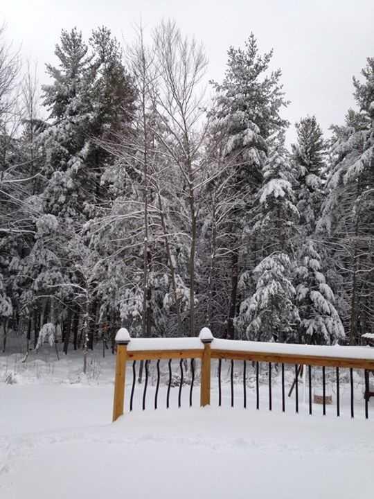 Nikki Bosley-Bushey's snow in Altona.