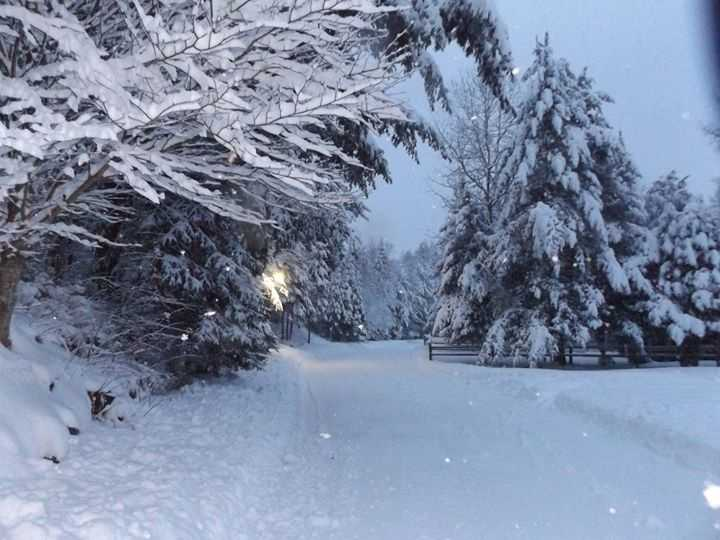 Connie shared this photo of the snow in Lake Placid.