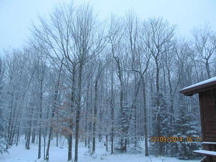 Snow in West Beekmantown from Terresa Portal.