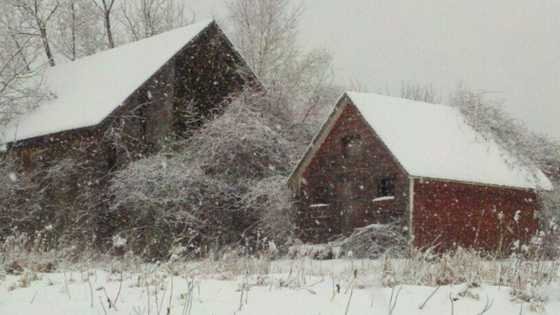ULocal user shared this picture of Rand Hill in Beekmantown.