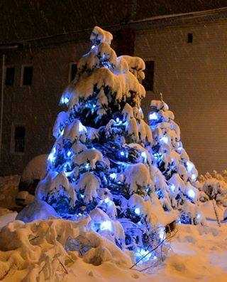 Bill Cramer in Tupper Lake shared this photo of his decorations glowing under the snow!