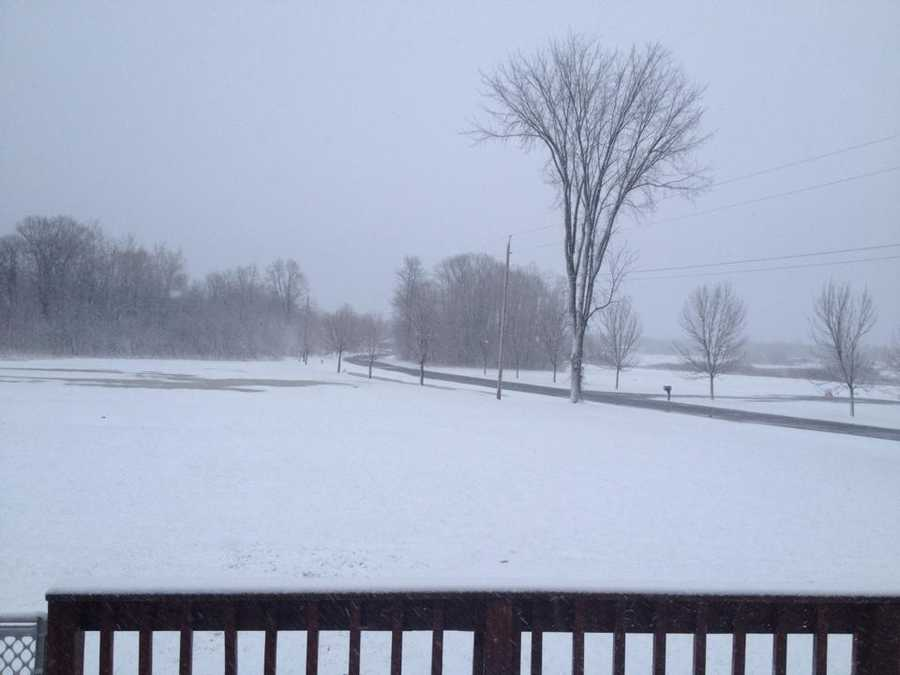 Here's what Misty's backyard looked like earlier today