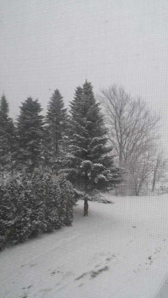 Sonya shared this snowy scene from Chateaugay