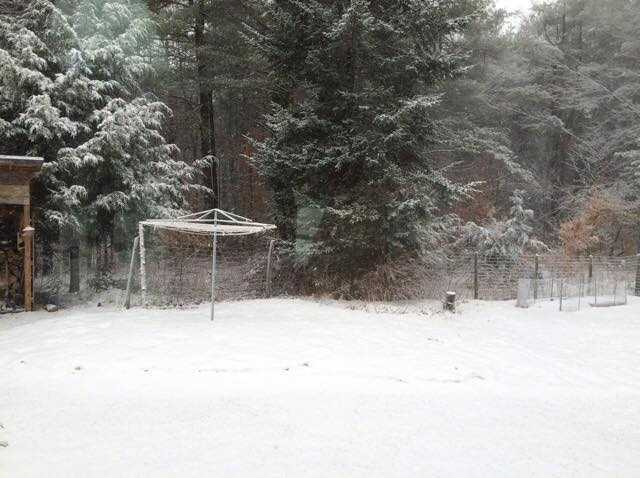 Thanks Sue for sending in this wintry shot