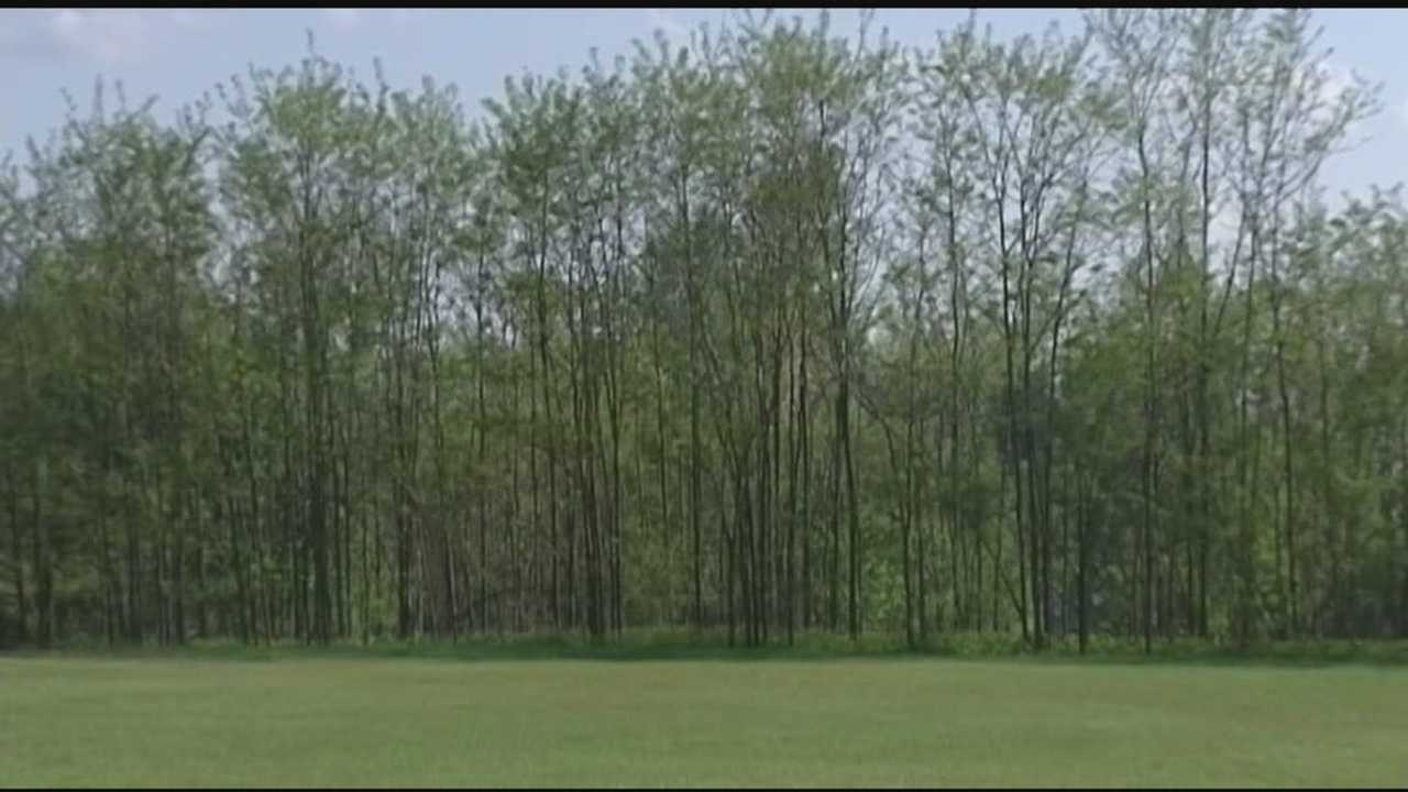 The future of land that once belonged to Burlington College continues to be debated. Some people felt they weren't given enough opportunity to give feedback two weeks ago at a community meeting. Tuesday they had another chance.