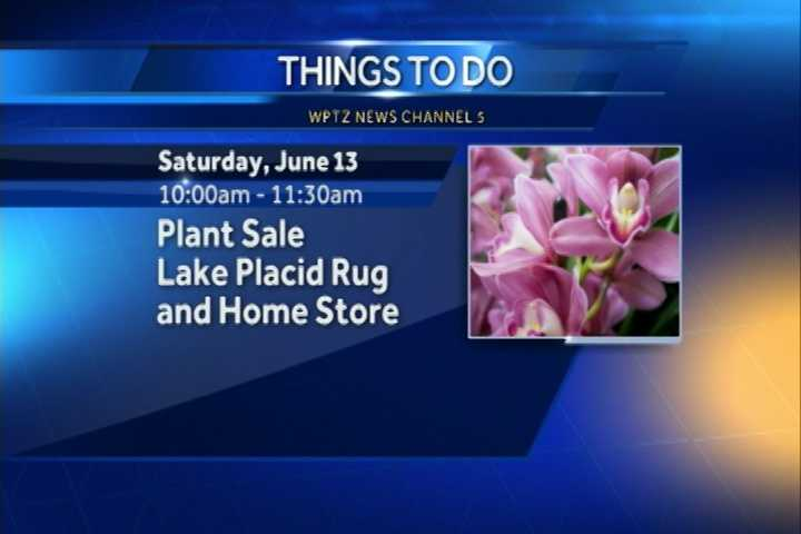 The Lake Placid Rug and Home Store is having a plant sale from 10 a.m. to 11:30 a.m. There you can find perennials, shrubs, veggie seedlings and more.