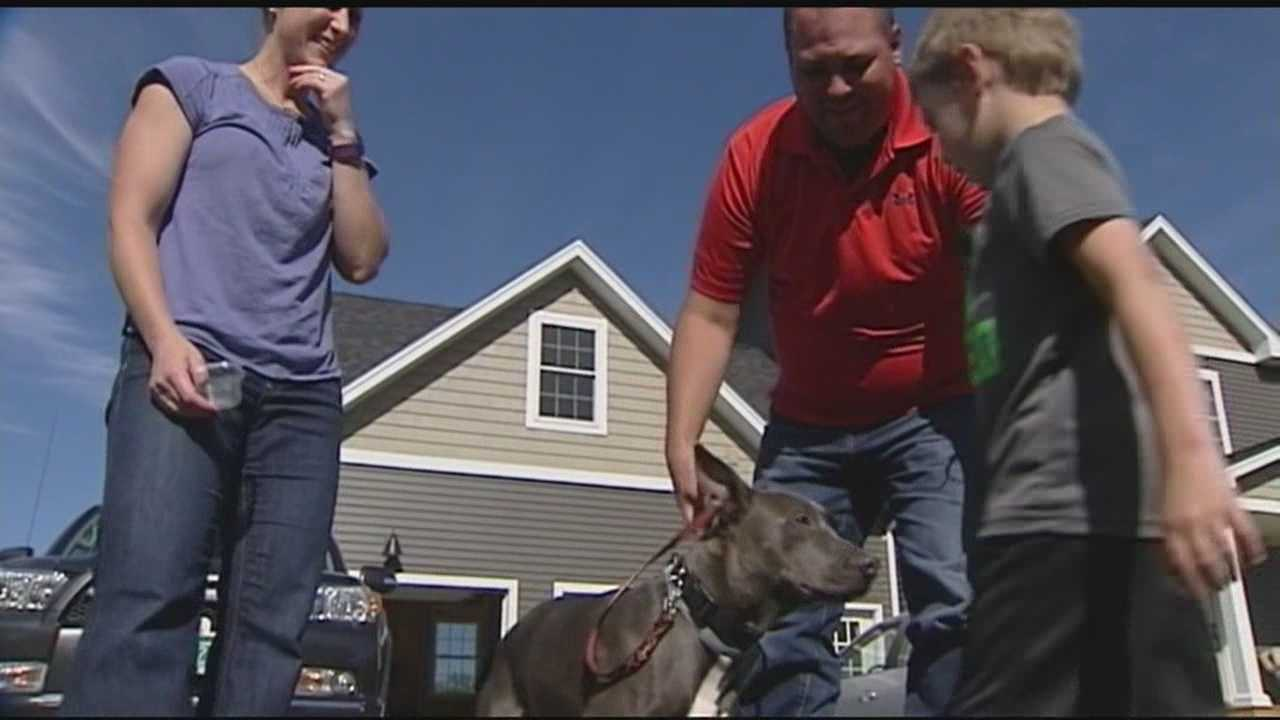 A boy who has autism has a special connection with his dog. The pet was one of dozens of dogs rescued from a house in Eden. The dog is very sick and the family needs help funding his care.