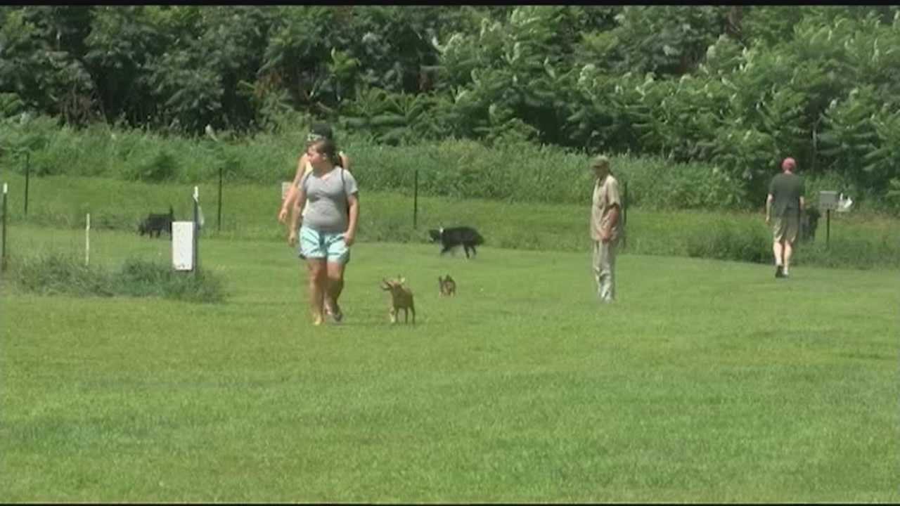 Some neighbors near the Starr Farm Dog Park say it's too loud and crowded. Pet owners say they like it the way it is. Possible changes will be discussed at the Burlington Parks and Rec Commission meeting on Tuesday.