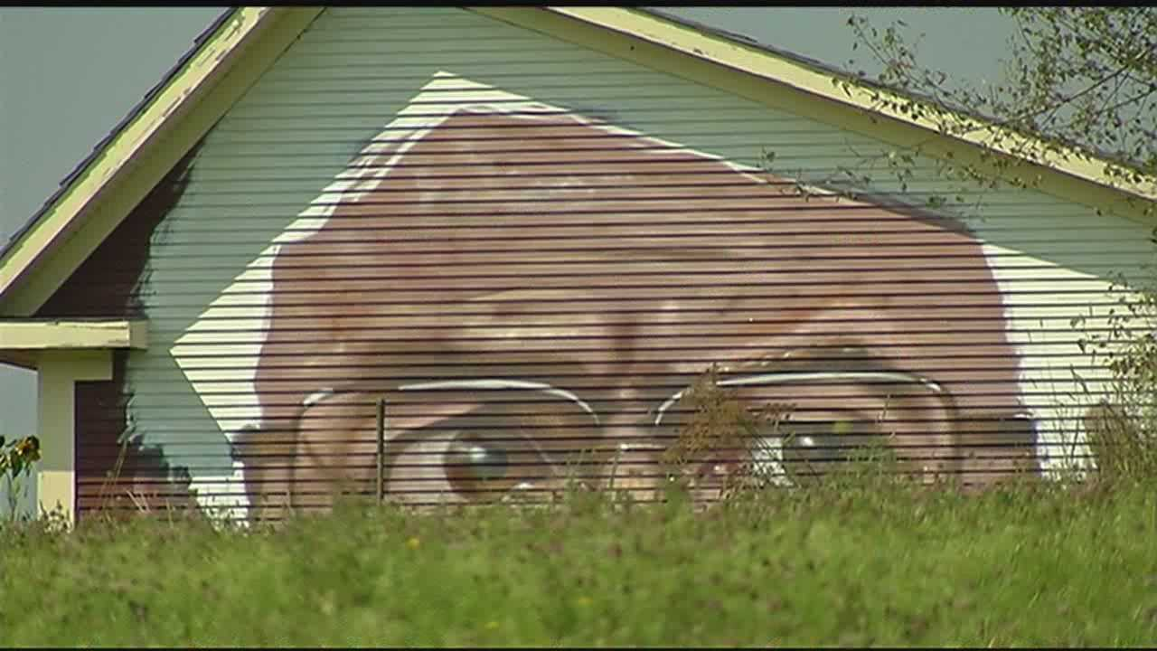The mural shows a close-up view of Bernie Sanders, featuring his glasses and expressive eyes.