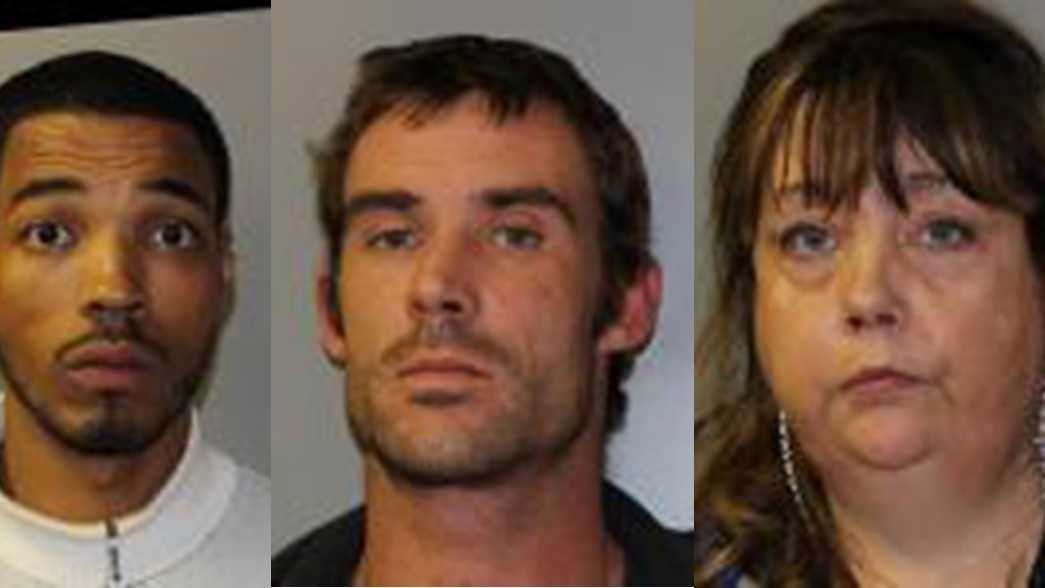 Jeffrey D. Johnson, 29, of Albany, Travis M. Sharp, 35, of Mineville, and Kathleen A. Savage, 49, of Port Henry