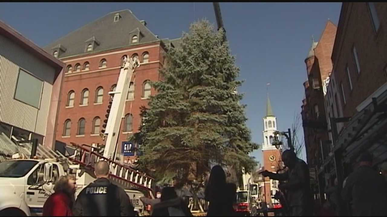 For the Ryan family in South Burlington, donating their 45-foot spruce for the Church Street Marketplace helped them feel more like part of the community, especially during a difficult time for their family.