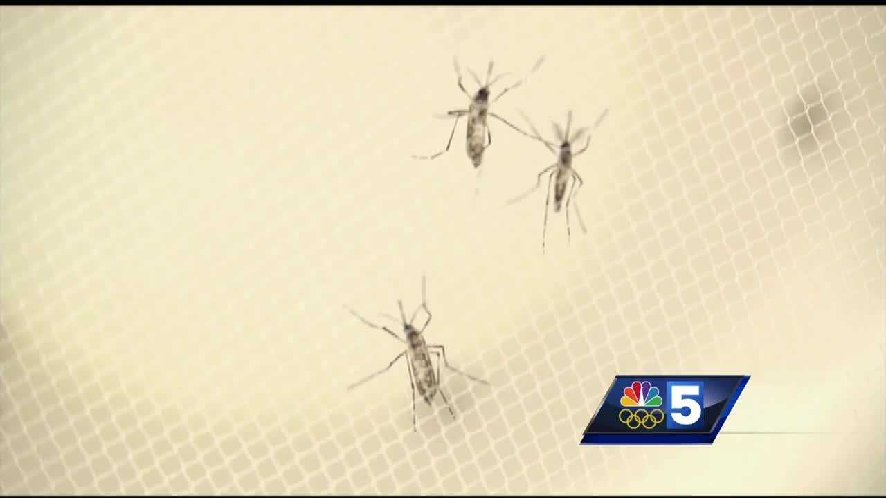 New York state is offering free tablets to residents who request them to help stop mosquito breeding.