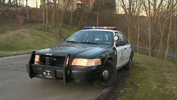Ross Township police car