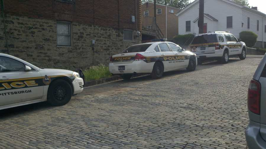 The Pittsburgh Police Bureau's Annual Report is out, and statistics show an overall decrease in city crime over the past 10 years, from more than 19,000 incidents in 2002 to 12,673 last year.