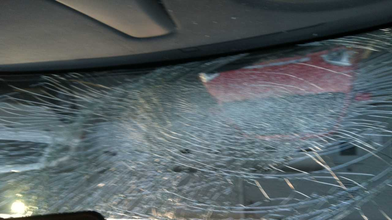 State police in Greensburg say two drivers on Route 30 reported having their windshields smashed by a peahen.