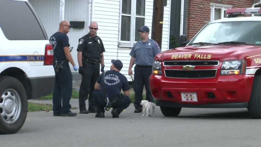 small dog with firefighters