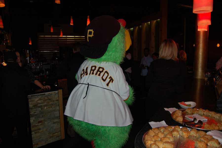 Follow that parrot to your table....