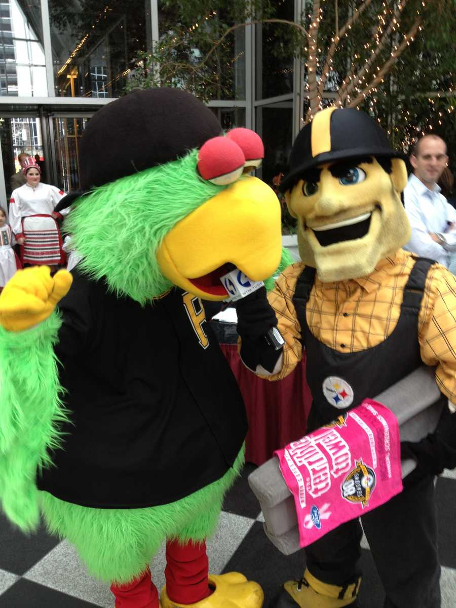 """Steely McBeam """"interviews"""" The Pirate Parrot."""