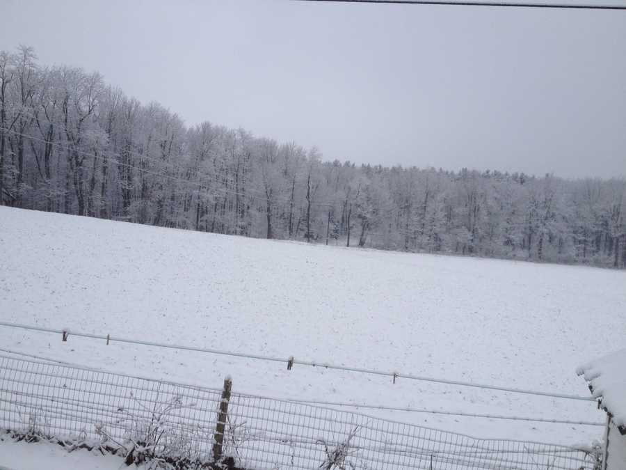 Snowfall in Grantsville, MD - Submitted by Teresa Smith