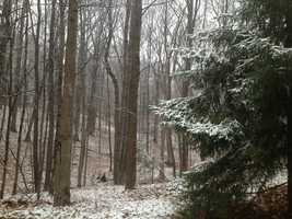 Washington Township Snow (photo by Andy Cunningham)