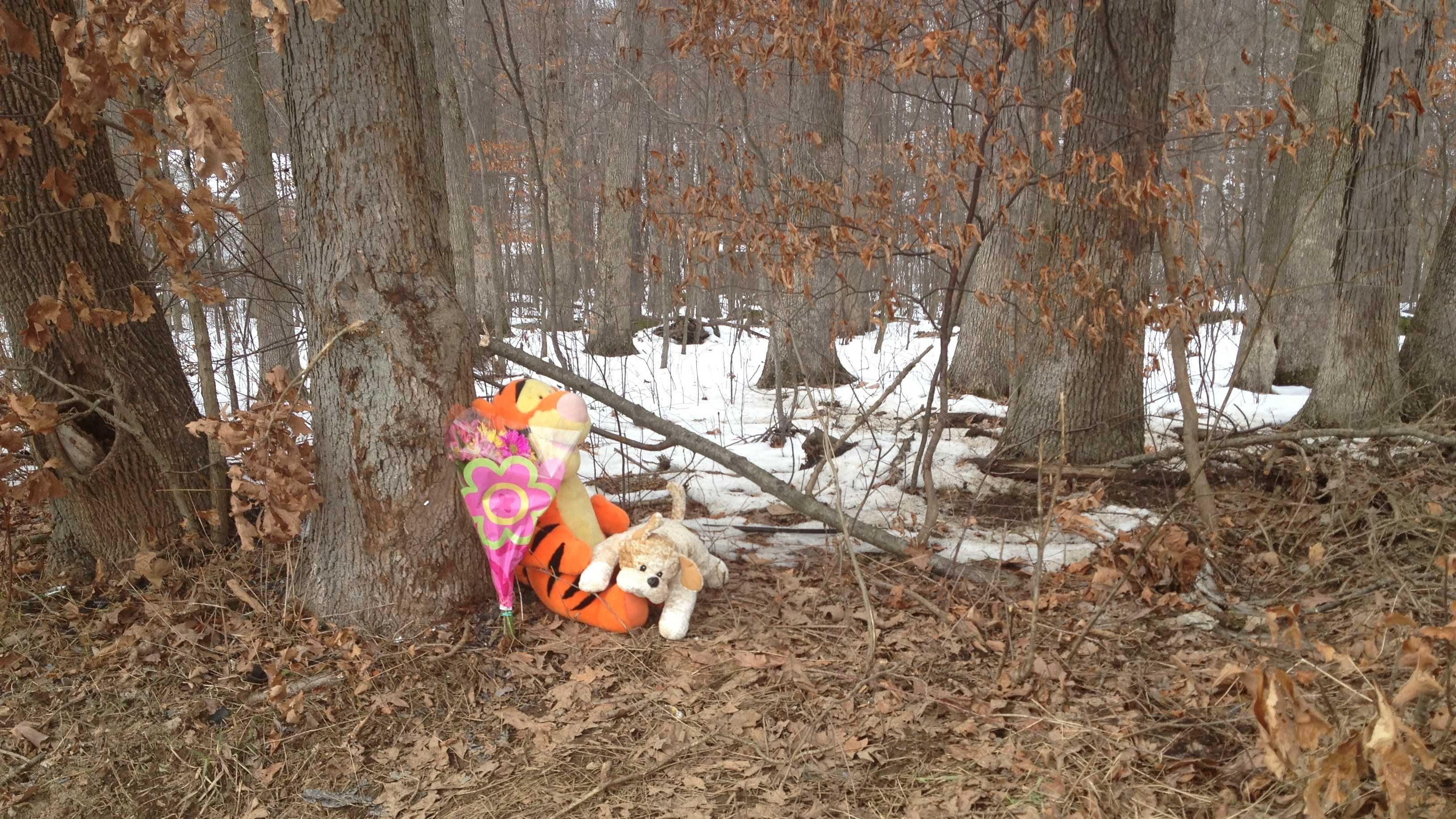 Flowers and stuffed animals were placed at the crash scene where two young boys died in Connoquenessing.