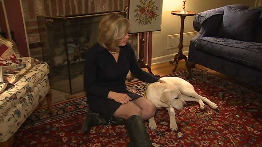 Channel 4 Action News anchor Sally Wiggin and Gadget