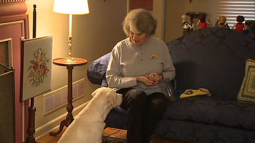 Carolyn Hrach, of Franklin Park, trains dogs for Canine Companions for Independence, which provides assistance dogs for adults and children with disabilities.