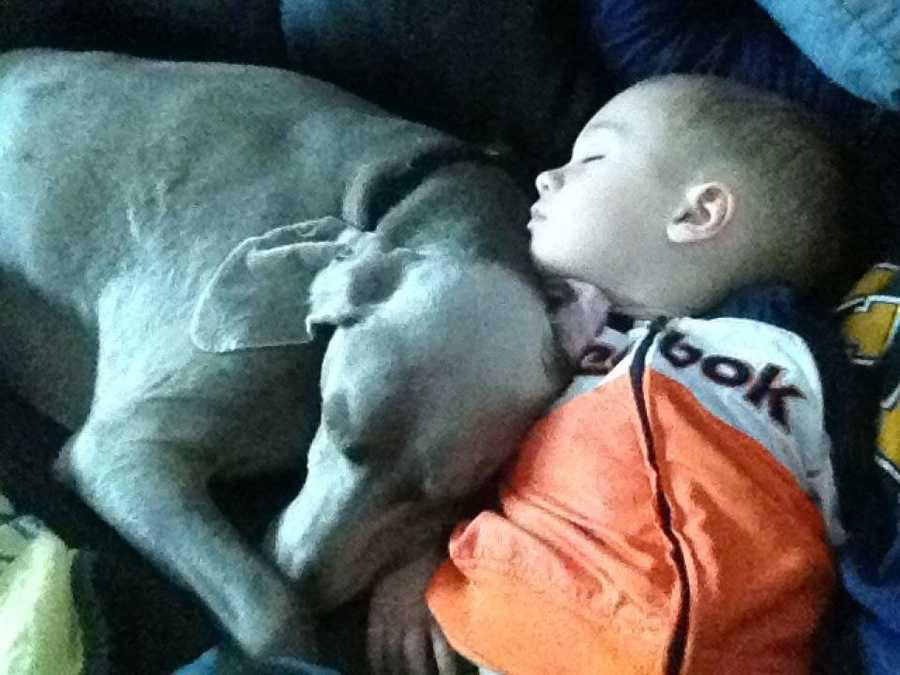 But Janelle says the best part of her day is coming home to Tucker (her Weimaraner pup) ...