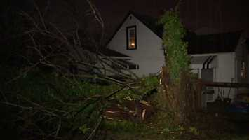 A tree fell on top of a house on Jackson Road during heavy rainfall and strong winds.